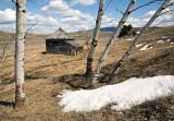 Field's Ranch