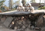In S/ Chingnyu. Under the stone the heads from headhunting times are kept.