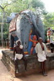 Elephant in Namana Samudram. http://www.blurb.com/books/3782738