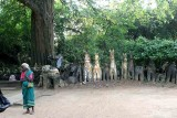 In Namana Samudram. http://www.blurb.com/books/3782738