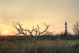 salt meadow sunset.jpg