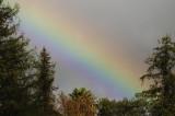 A bit of Rainbow