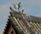 The Phoenix and the Heron