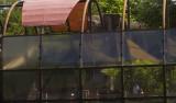 Houston Zoo 06