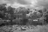 Sturminster Newton Mill - 01