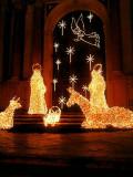 ZN5_ 019_Feliz Navidad.jpg