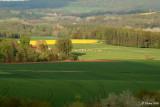 Laonnois