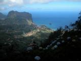 Madeira2003-618.jpg