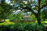 Pedersen Farm