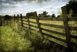 Fence Line Along The Yankee Area