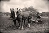 Spring plowing.