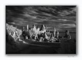Mono Lake - Monochrome