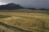 south park hay fields