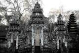 Bat temple - Bali