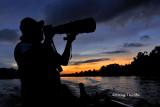 Kinabatangan - sunset