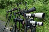Lens parade