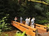 Muir Woods D300_06398 copy.jpg