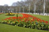 Gardens at Buckingham