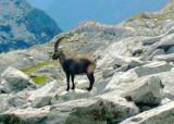 Ticino Trek in Zwitserland in 2008