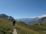 afdaling van Col de l'Echauda