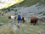 richting Cabane Pastorale du Jas Lacroix