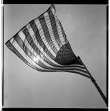 Sun Spangled Banner