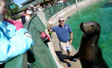 Little Dunk and the Sea Lion