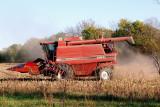 Harvesting Missouri Corn