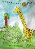 giraffe, Philip, age:4
