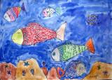 fish, Tracy, age:4.5