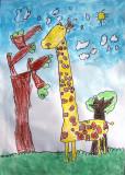 giraffe, Simon, age:5.5