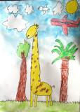 giraffe, Rick, age:5.5