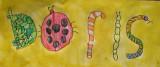 name design: Insects Doris, Doris, age:6