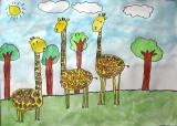 giraffe, Sophia He, age:6