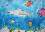 shark, Sarah, age:7