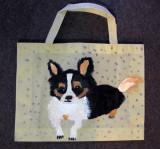 recycle bag, Jamie Ma, age:7.5