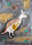 kangaroo, Celina, age:7.5
