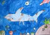 shark, Alexander, age:6.5