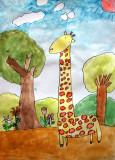 giraffe, Grace, age:6