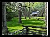 Carter-Shields Cabin