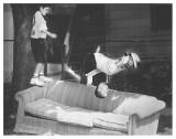 Sofa Acrobatics