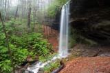 2009 Waterfalls & Other Adventures