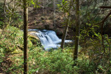 Avery Creek Falls 1