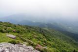 Roan Mountain 8