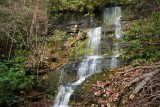 waterfall on Tributary of Wild Hog Creek 1