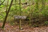 King Creek Falls, SC 1
