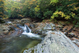 October 15 - East Fork and Flat Laurel Creek