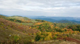 Max Patch 3
