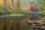 October 18 - DuPont State Forest