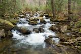 Middle Saluda River 1